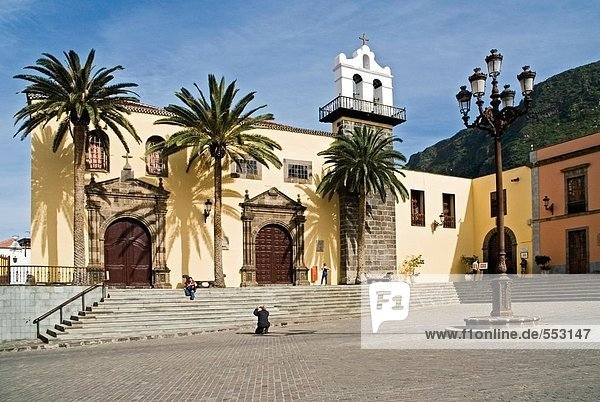 Palmen vor der Kirche  Garachico  Teneriffa  Kanaren  Spanien
