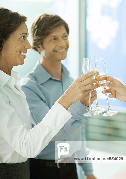 Mature professionals toasting with glasses of champagne