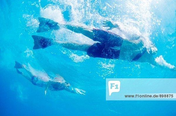 Leibgarde schwimmen