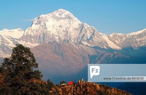 Trekker Camp mit Blick auf den Südosten Gesicht ot Dhaulagiri (8.167 m). Himalaya. Nepal