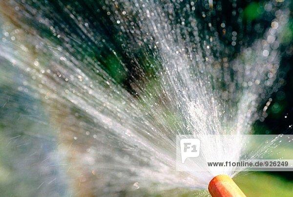 Wasser Sprühen von Gartenschlauch