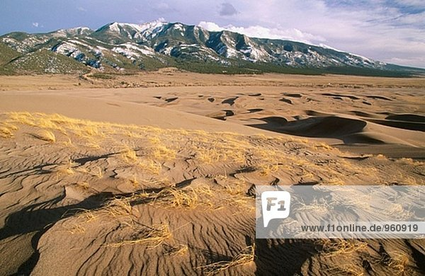 Great Sand Dunes National Monument. Colorado. USA