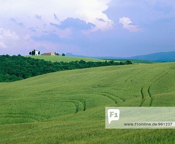 nahe, Feld, Italien, Pienza, Toskana, Villa