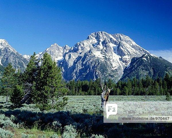 Grand Teton Range und Schnee. Grand Teton Nationalpark. Wyoming  USA