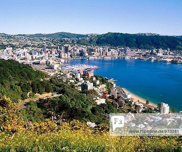Wellington. North Island  New Zealand