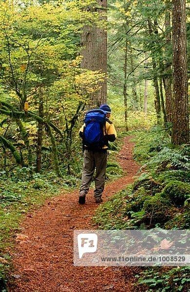 Wanderer auf Waukeena Schleife. Columbia River Gorge. Oregon. USA.