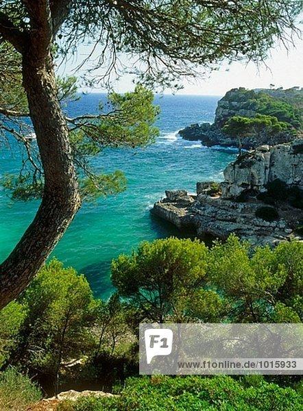 Küste in S´Almonia. Mallorca. Balearen. Spanien.
