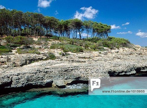 Mondragó Nationalpark. Mallorca. Balearen. Spanien.