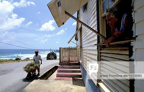 Gebäude Küste Barbados