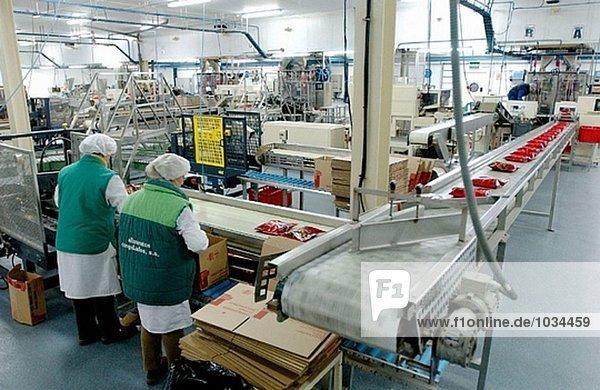 Tiefkühlkost Industrie  Verpackung Linie. Navarra. Spanien