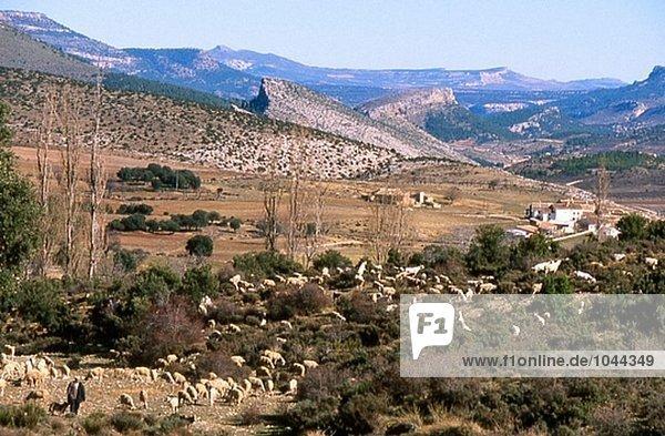 Los Chorretites Dörfchen  Nerpio  Taibilla Valley  Sierra de Segura  Provinz Albacete. Spanien