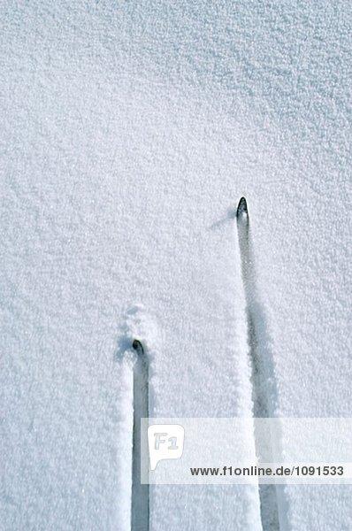 Ski neigt sich von  Langlaufski im Schnee während der Fahrt