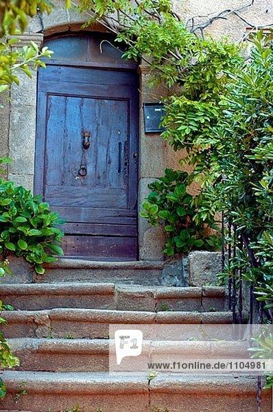 Frankreich Tür Pflanze Treppenhaus alt