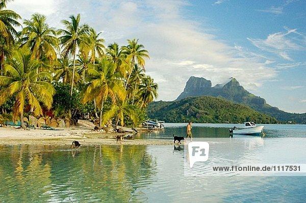 Teva Victor  Sohn von Paul-Emile Victor  mit Familie auf eine kleine Insel namens Privatinsel wo er betreibt ein Miethaus. Bora-Bora Island. Französisch-Polynesien. South pacific
