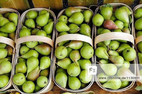 Landwirte Flohmarkt in der Nähe von Lexington (Michigan  USA) verkauft Farm Gemüse  Obst und gebackenen Produkte an die Öffentlichkeit