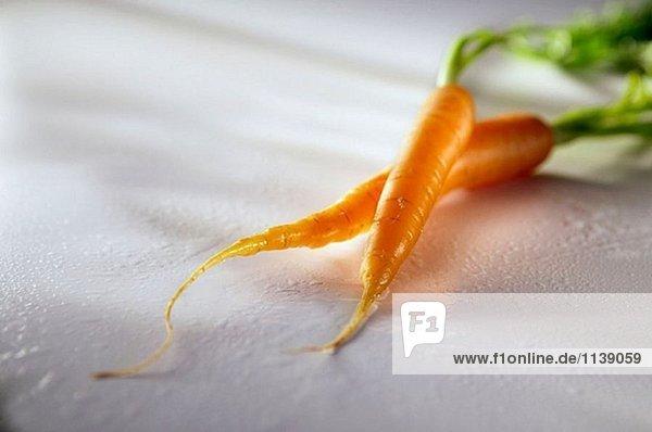 Zwei Karotten
