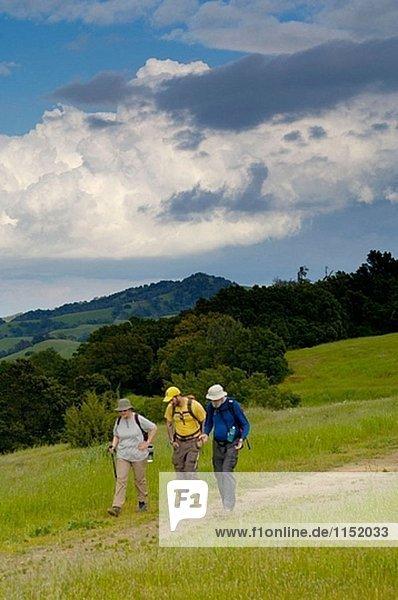 Gruppe von Erwachsenen Wandern auf Trail Pfad in Geen Hügel unter Frühling Gewitterwolken Mount Diablo State Park  Kalifornien  USA