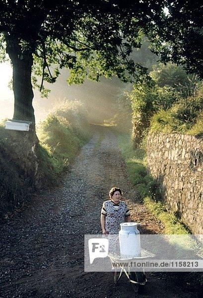 Wartend für Milch sammeln  bei Sonnenaufgang  in der Nähe von Villabono. Asturias. Spanien. Wartend für Milch sammeln, bei Sonnenaufgang, in der Nähe von Villabono. Asturias. Spanien.
