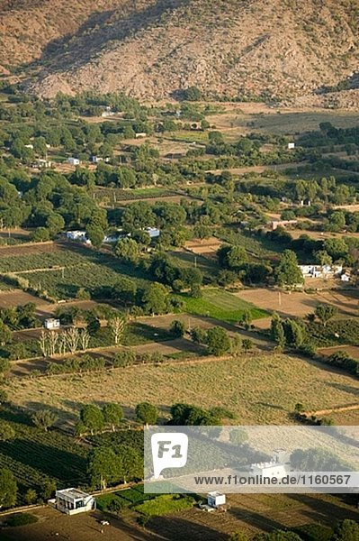 Luftbild von Pushkar Felder von Savitri Tempel. Pushkar Kamel Messe. Pushkar. Rajasthan. Indien.