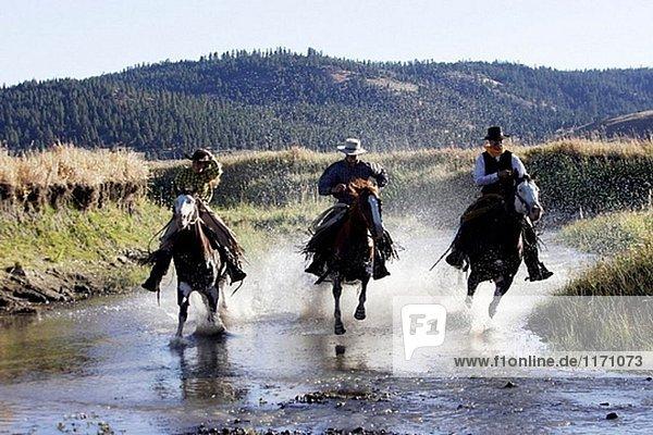 Cattlemen mit ´Quarter Horse´ und/oder ´Paint´ der USA. Ponderosa Ranch. Seneca. Oregon. USA