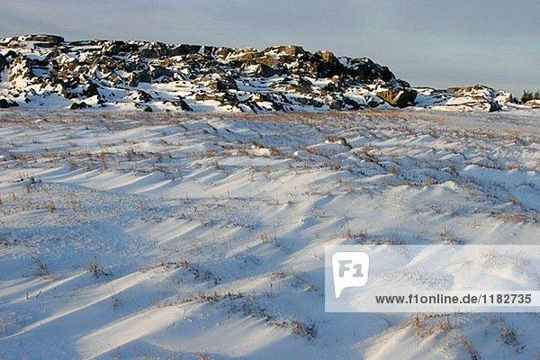Gefroren Felsen zu Tage tretenden in der Nähe der Küste der Stadt von Churchill  Manitoba  Kanada.