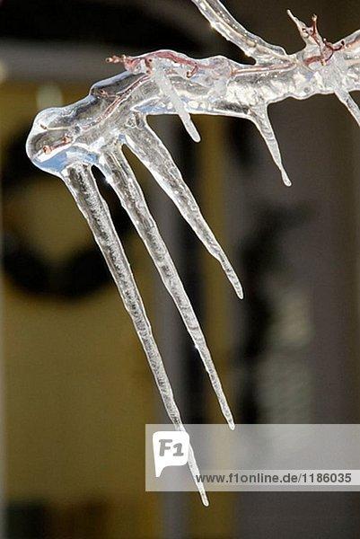 Ice-Zyklen Form aufgrund einer Temperaturen über Einfrieren Kennzeichen  das Eis dann schmilzt gehen refreezes
