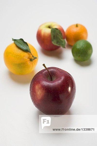 Äpfel und Zitrusfrüchte