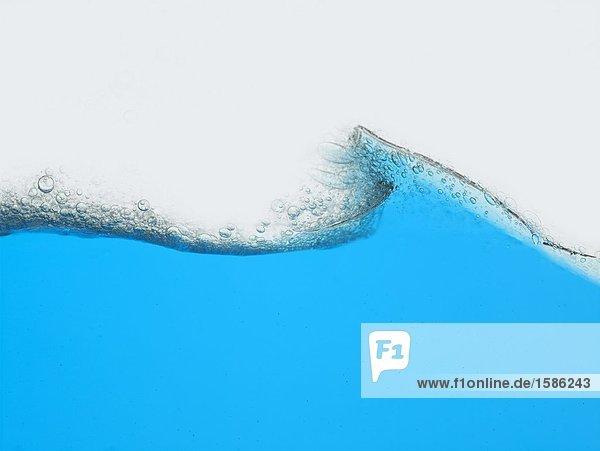 Wasser