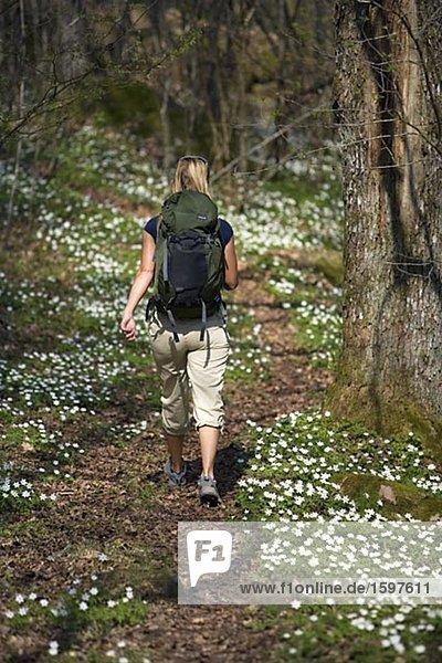 Frau auf einen über große Entfernungen Wanderweg Boras Schweden.