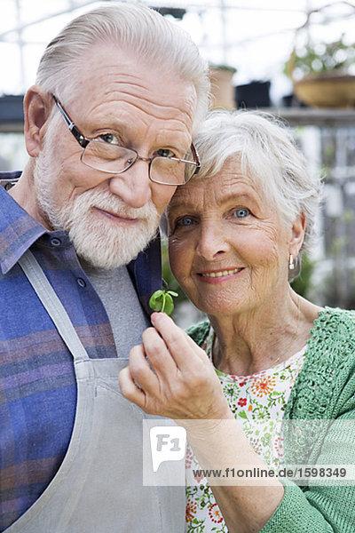 Ein älterer skandinavischen Paar mit ein Sämling Schweden.