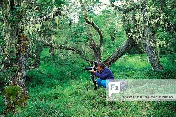 Photographer in the forest at the Rio Serrano
