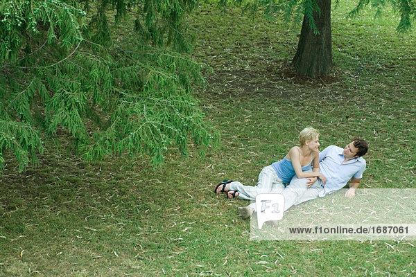 Paar liegen im Gras  lächelnd gegenseitig  Ganzkörperansicht  erhöhte Ansicht
