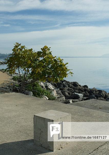 Zement-Block in der Nähe von Rand des Sees
