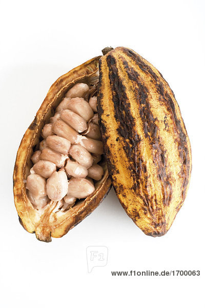 Offene Kakaoschale  erhöhte Ansicht