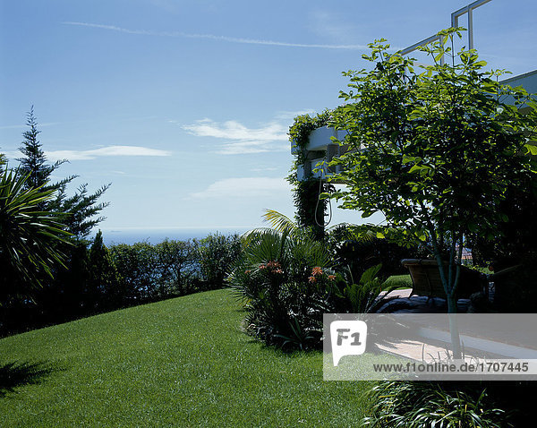 Wohnhaus Rasen Ansicht
