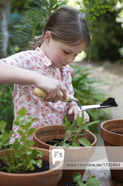 Mädchen Blumenerden Pflanzen