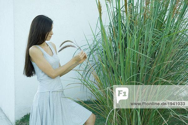 Woman looking at ornamental plant
