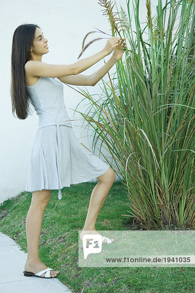 Woman looking at ornamental plant  holding stems  full length