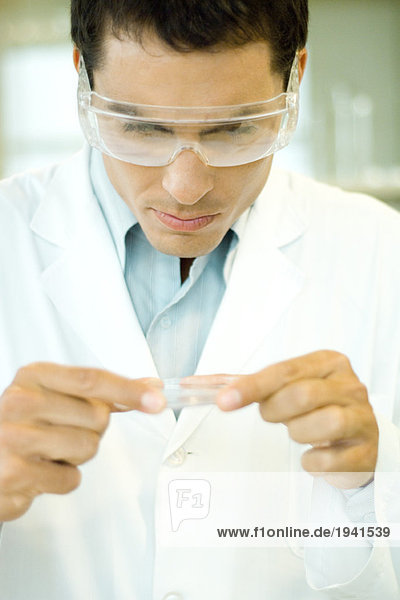 Researcher wearing protective goggles picking up Petri dish