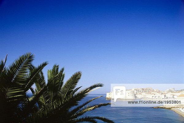 Kroatien  Dubrovnik  Blick auf die Altstadt