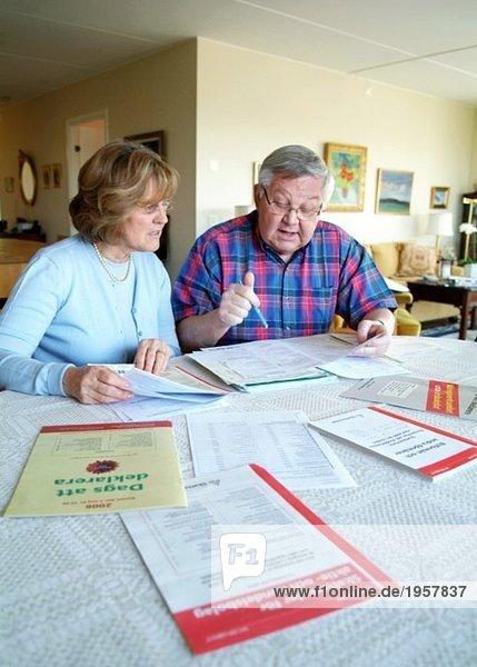 Ausfüllen der Papiere der Einkommensteuererklärung