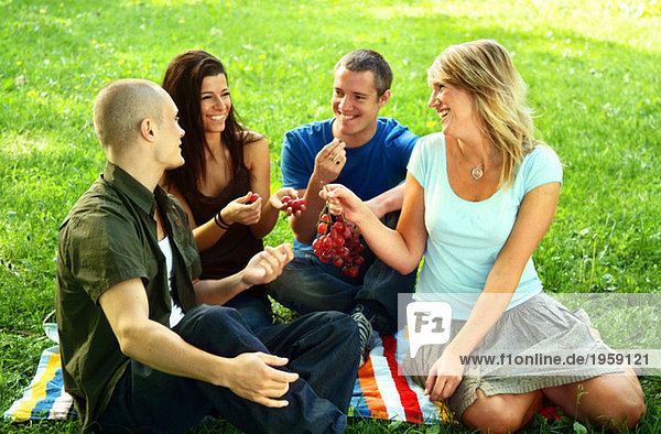 Four friends sitting in park
