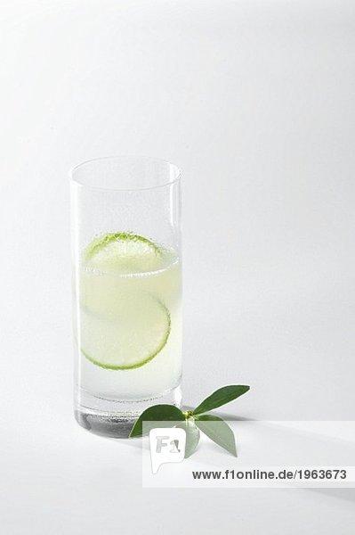 Gin Fizz im Longdrinkglas mit Limettenscheiben Gin Fizz im Longdrinkglas mit Limettenscheiben