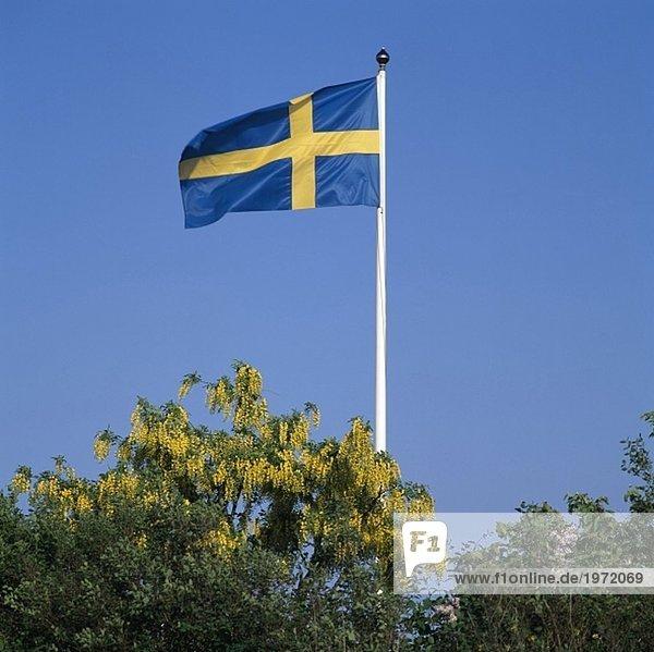 Untersicht der schwedische Flagge