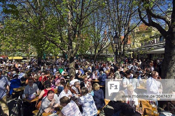 Gruppe von Menschen sitzen am Biergarten  München  Bayern  Deutschland