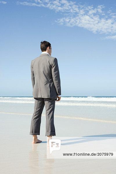 Businessman standing barefoot on beach  rear view