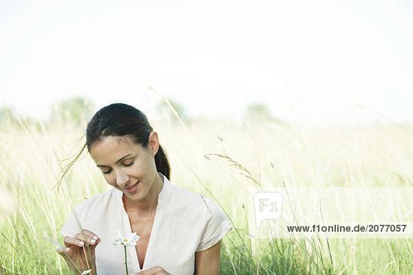 Frau im Feld  Blume  Kopf und Schultern schauen