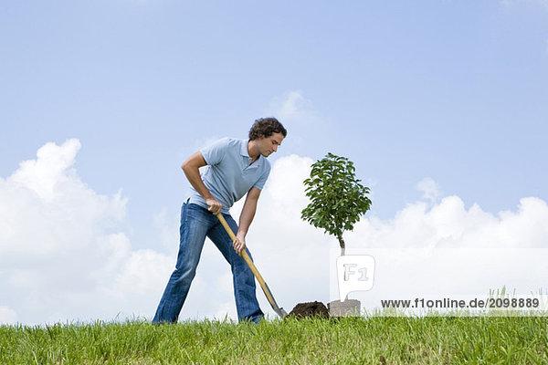 Mann pflanzt Baum  Nahaufnahme