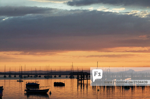 Germany Allensbach  Lake Constance at sunset