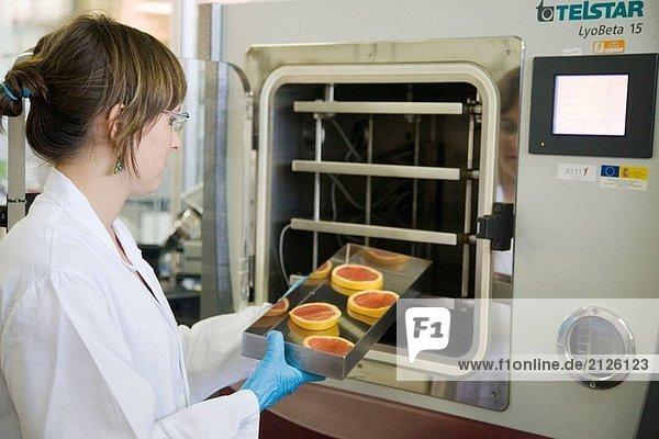 Pilotanlage. Das Experimentieren mit flüssigem Stickstoff in der Nahrung. Orangen. Laboratorien. AZTI-Tecnalia. Zentrum für technologische spezialisiert auf Marine und Food Research. Sukarrieta  Bizkaia  Baskenland. Spanien.